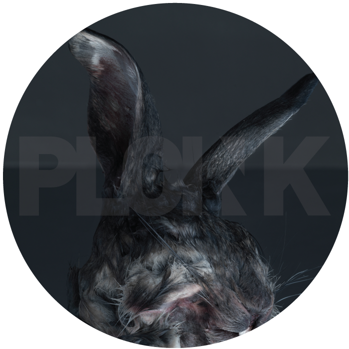 PL002NK<br />VAKUM<br />UNTITLED EP</br>Release date: 04OCT14